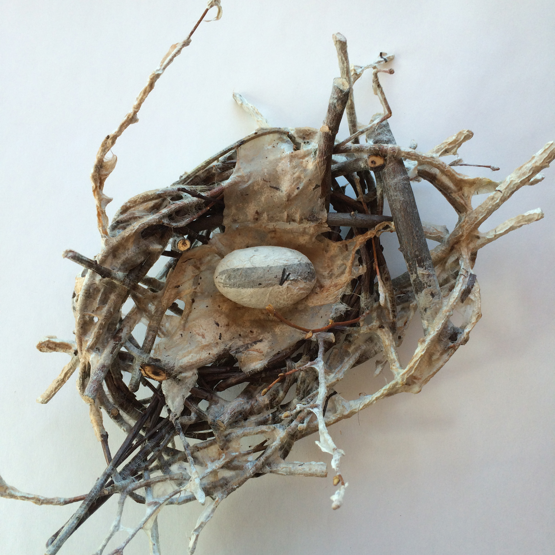 Paper & Sticks: Contemporary Basketry