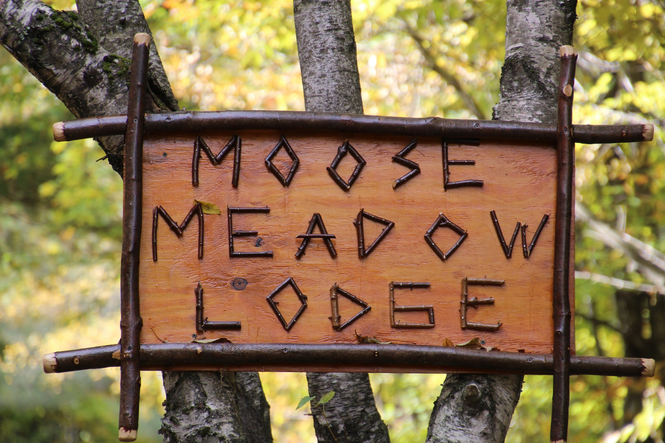 Moose Meadow Lodge sign